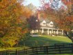 The Inn from the Paddock - Adjusted - Copy.jpg