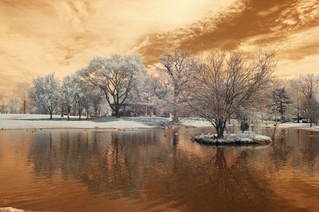 Schiller Park Infrared.jpg