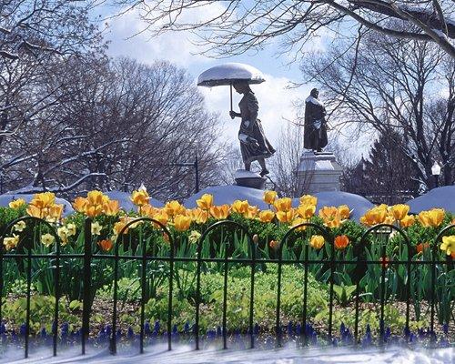 Winter Spring Schiller 8-10.jpg