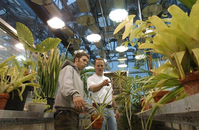 denison-talbot_greenhouse.JPG