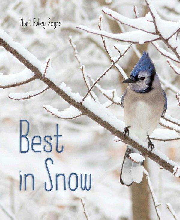 best-in-snow-9781481459167_hr.jpg
