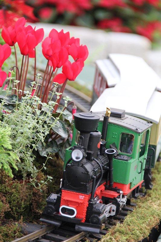Busse Train 4_Franklin Park Conservatory.jpg