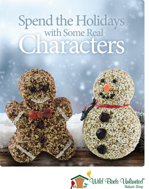 Sign 8.5x11 Promo Characters Holiday 1712P (1).jpg