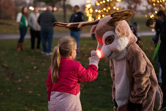 2017-christmas-tree-lighting_38052834554_o.jpg