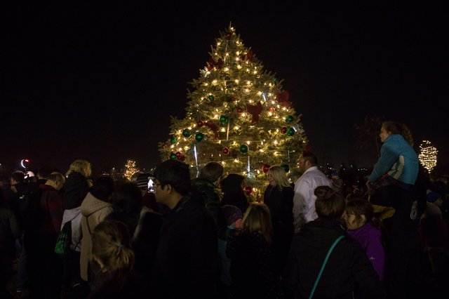 2017-christmas-tree-lighting_38769227381_o.jpg