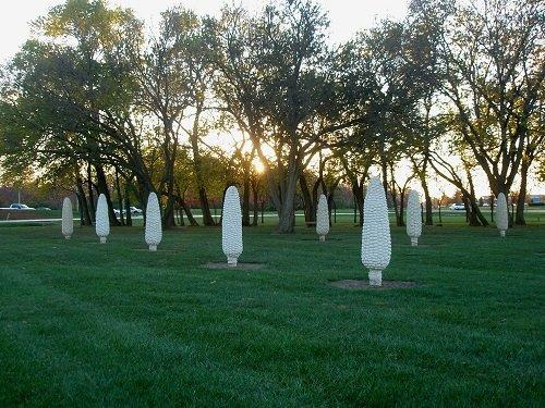 Field Of Corn (with Osage Oranges) by Malcom Cochran in Frantz Park.1.jpg