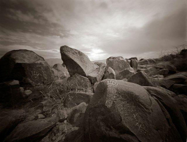 Dennis Savage Photography