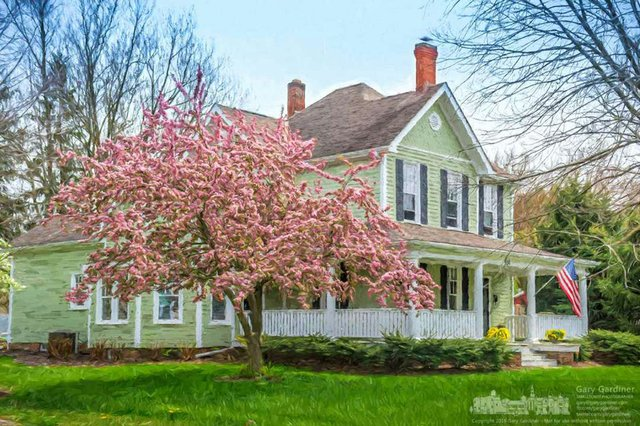 uptown-house-flowers-trees-2016-04-19-04766.nef