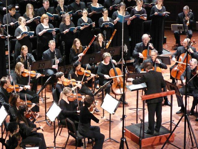 ProMusicaChamberOrchestra_ProMusica .jpg