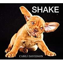 Shake.jpg