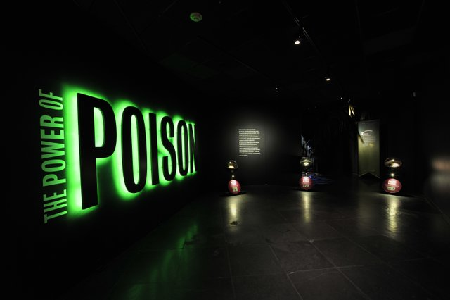 The Power of Poison Entrance