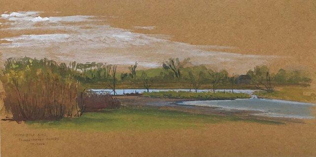 Ward_Wood Duck Pond_PickeringtonPonds_HIGHRES.jpg