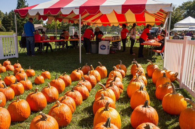 FallFestPumpkins (Courtesy of the City of Upper Arlington).jpg
