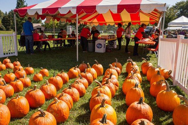 FallFestPumpkins (Courtesy of the City of Upper Arlington).jpg