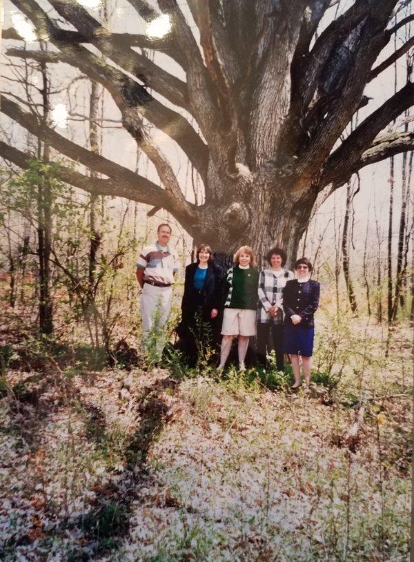 The Tree.jpg