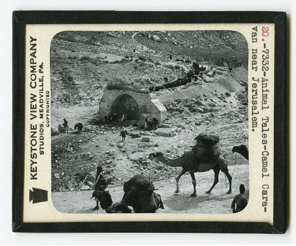 Jerusalem Camel Caravan Magic Lantern Slide.jpg