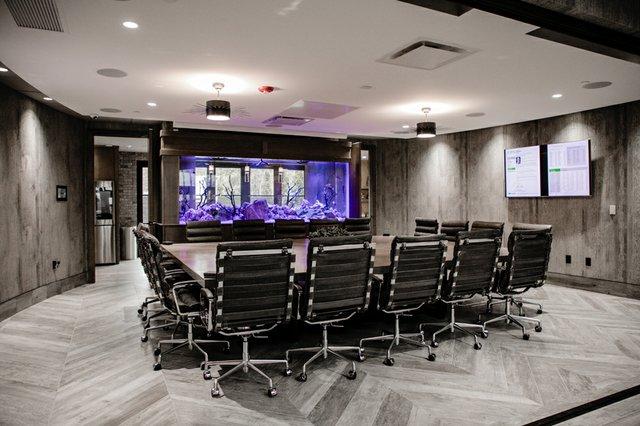 Conference Room Fish Tank.jpg