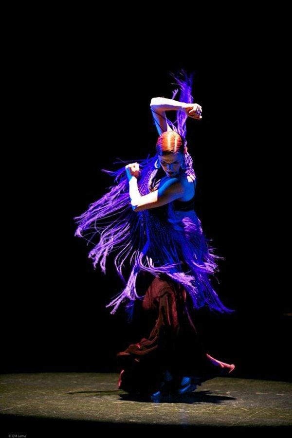GrisetDamas (Spainish Flamenco Festival) credit Carlos Mario Lena.jpg