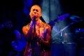 Nicholas Wilson - Shadowbox Live.jpg