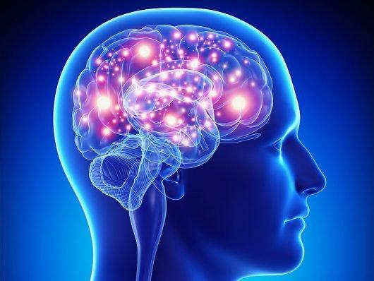 epilepsy-530x398.jpg