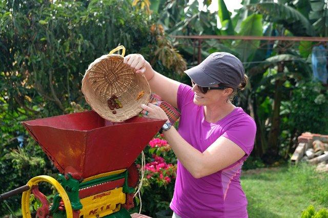 Coffee Plantation, Jardin, Colombia (2) - Copy.JPG