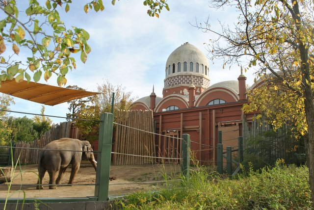 Cincinnati_Zoo_-_Elephant_House_View_3.jpg