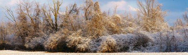 Last Snow of Season red.jpg