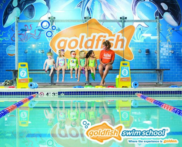 goldfishswimschool2.jpg