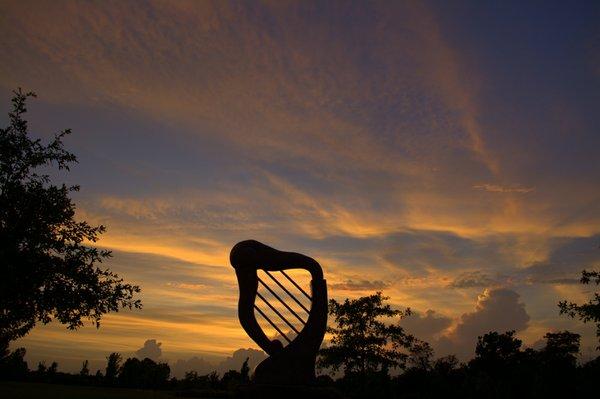 20180702 Harp1.jpg