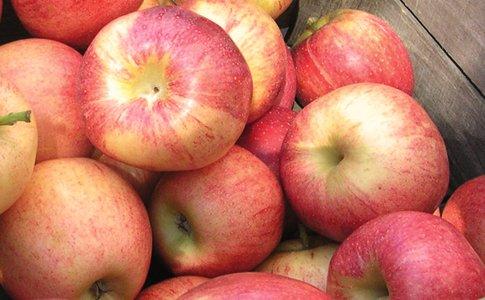 apples2- farmers mkt.jpg