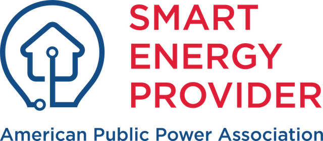 Smart Energy Provider (1) (1).png