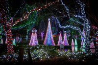 Wildlights 8101 - Grahm S. Jones, Columbus Zoo and Aquarium.jpg