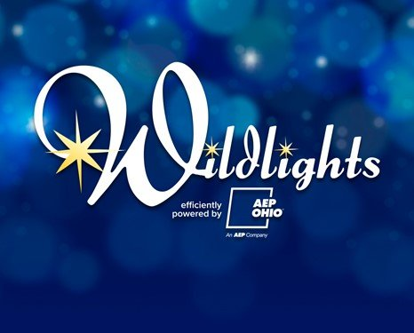 wildlights-website-thumbnail-general.jpg