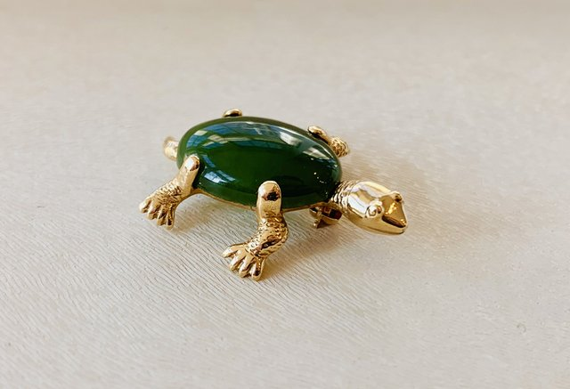 Style - Turtle Pin.jpg