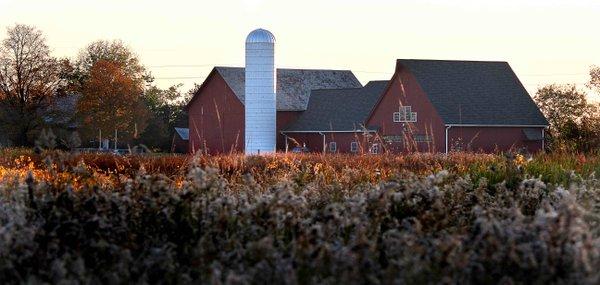 Pickerington Ponds Barn 01.jpg