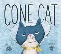 cone cat.jpg