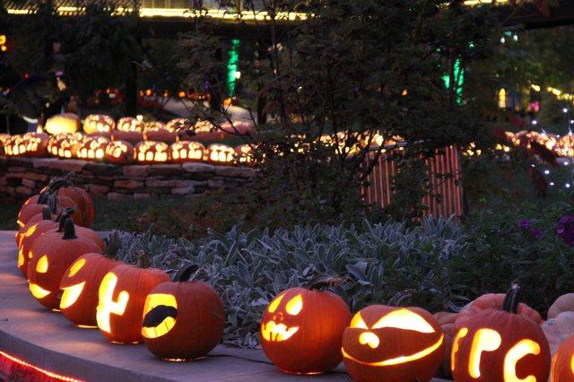 Pumpkins Aglow 2.jpg