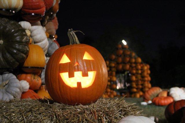 Pumpkins Aglow 1.jpg
