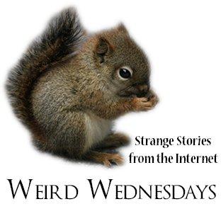 WeirdWednesdays15.jpg