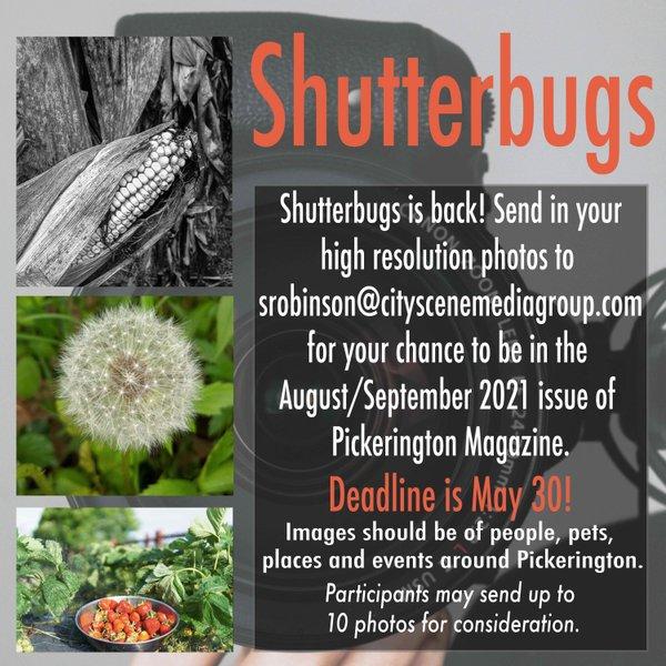 shutterbugs Pton ad.jpg