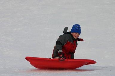 sleddingUAThompsonPark.jpg
