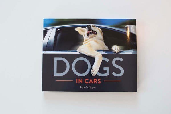 Dogs-IN-Cars-Tatler-11dec14_MichaelNewingtonGray_b_600x400.jpg
