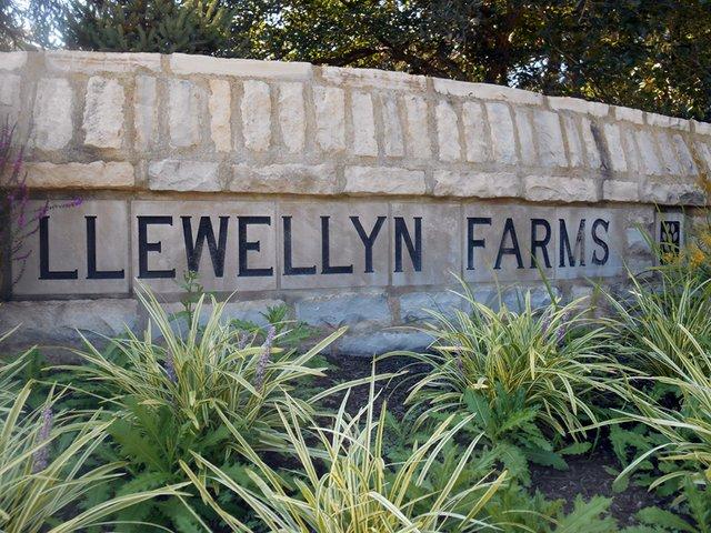 Llewellyn Farms2.jpg