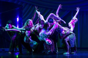 Shaping Sound company.jpg