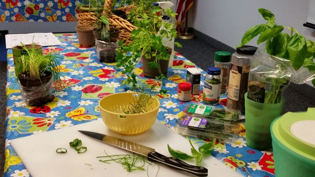 20160310_Friends_of_the_Grandview_Library_All_About_Herbs.jpg