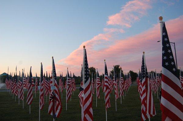 Flags at dawn.jpg