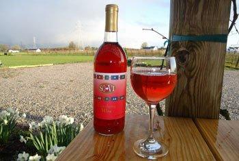 winefestival.jpg