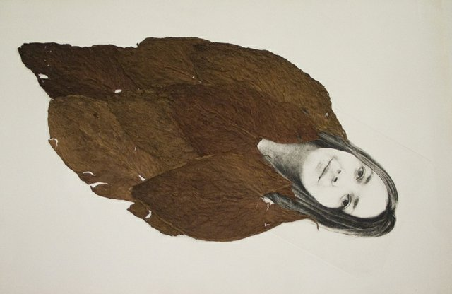 Sandra Ramos, Hoja de tabaco (tabaco leaves), 2008.jpg