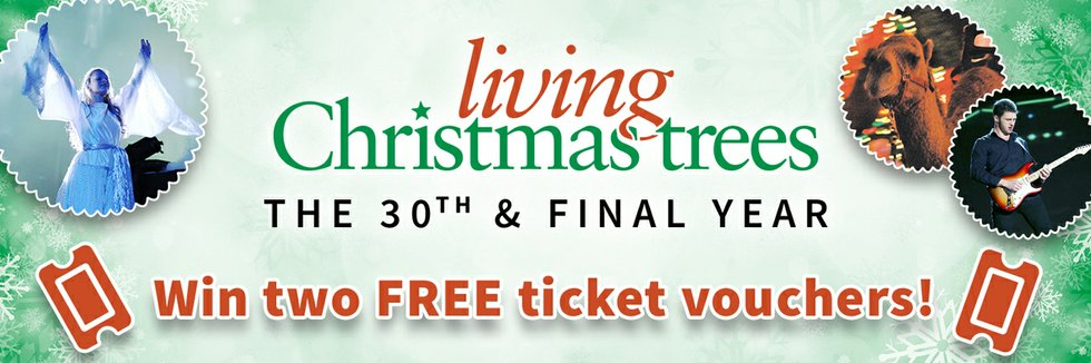 Living Christmas Trees 2016 Giveaway