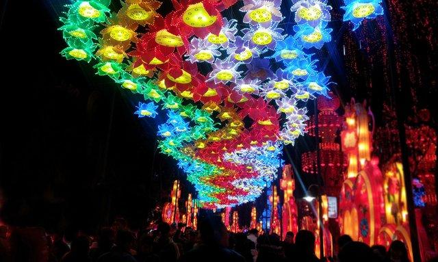 ohio lantern festival floral overheadjpg